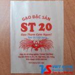 Gao ST20