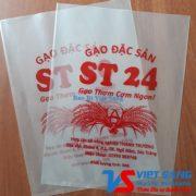 Gao ST24